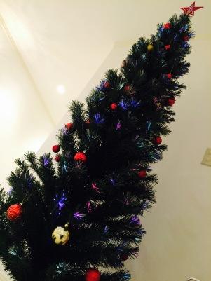 あなたから~♪ MerryChristmas♪1
