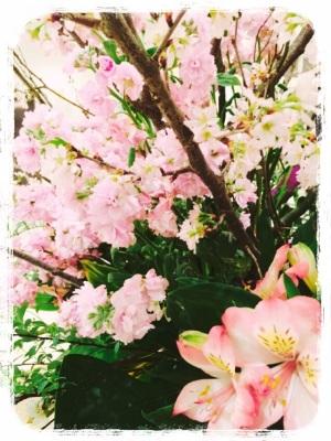 春模様♡1
