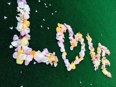 お花の季節1