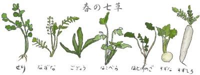 七草粥の日1