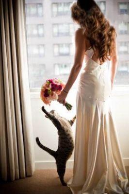 結婚式のHappyジンクス♪1