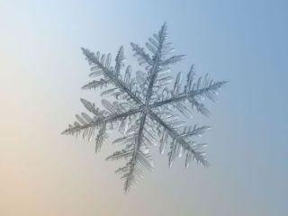 雪の結晶に込められたメッセージ1