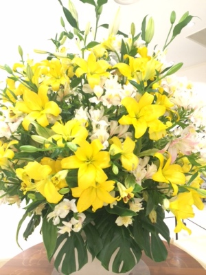 幸せの黄色い…1